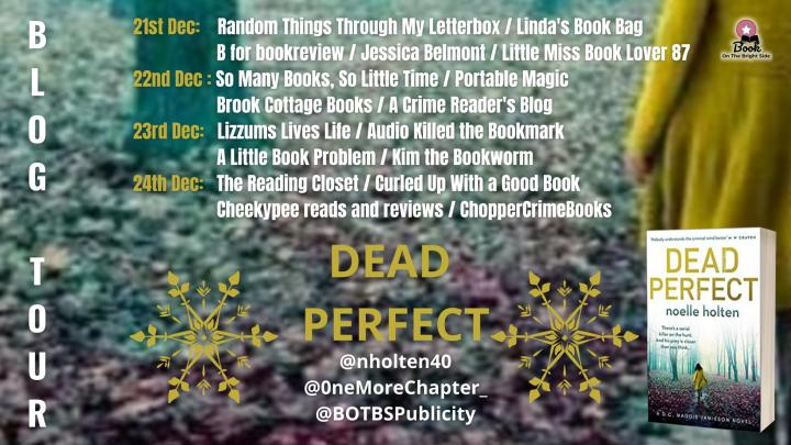 #BLOGTOUR | Dead Perfect – Noelle Holten @nholten40 @OneMoreChapter_ @BOTBSPublicity #amreading #bookblogger #bookreview#DeadPerfect
